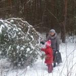 Научите ребенка любить живую природу